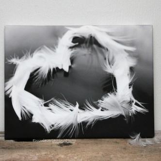 My feather heart på lerret 30x40 http://epla.no/handlaget/produkter/679876/