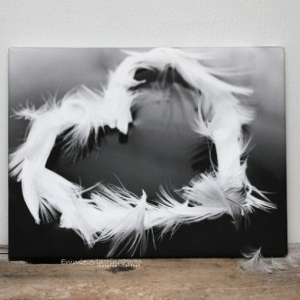 My feather heart på lerret 30x40 http://epla.no/handlaget/produkter/679876/