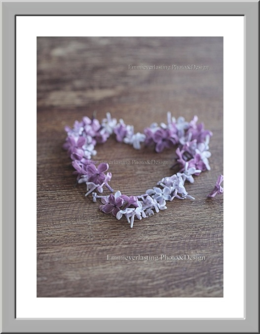 Emmieverlasting: My lilac heart. Foto av vakre syriner i hjerteform str. A3 http://epla.no/handlaget/produkter/792337/