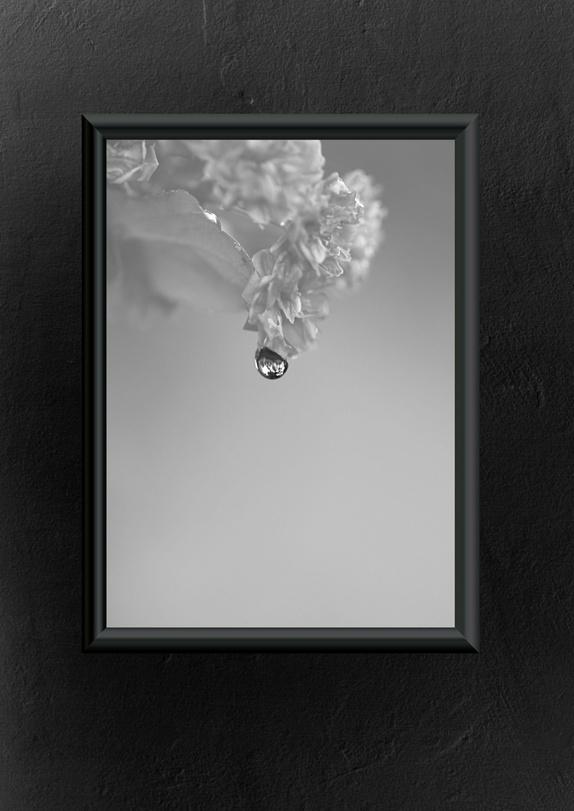 Emmieverlasting: Simply. Foto A3 http://epla.no/handlaget/produkter/794366/