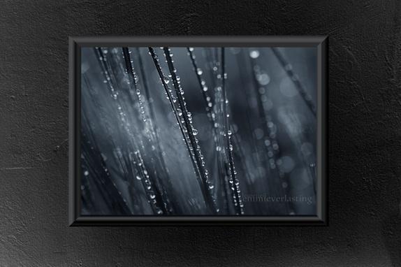 Emmieverlasting Temporary Beauty. Foto A3 http://epla.no/handlaget/produkter/808101/