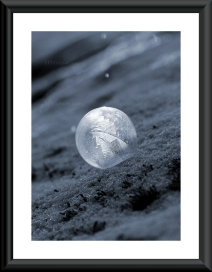 Emmieverlasting: Frozen bubble. Foto A4 https://www.epla.no/handlaget/produkter/835611/