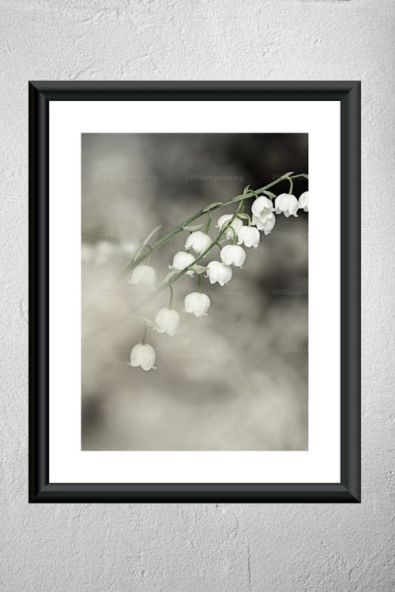 EMMIEVERLASTING: LILY OF THE VALLEY. FOTOKUNST A3 http://emmieverlastingdesign.tictail.com/product/lily-of-the-valley-fotokunst-a3