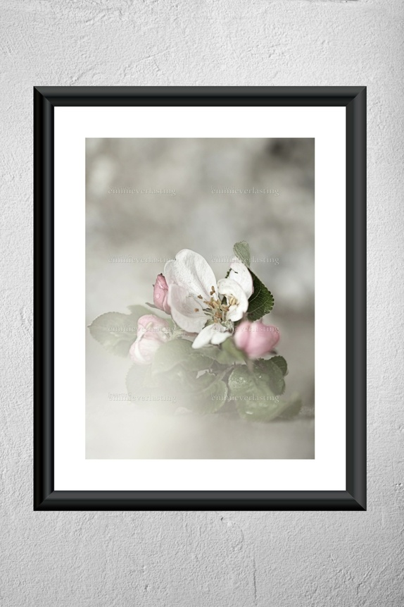 EMMIEVERLASTING: Spring Romance. Fotokunst A4 https://www.epla.no/handlaget/produkter/851175/