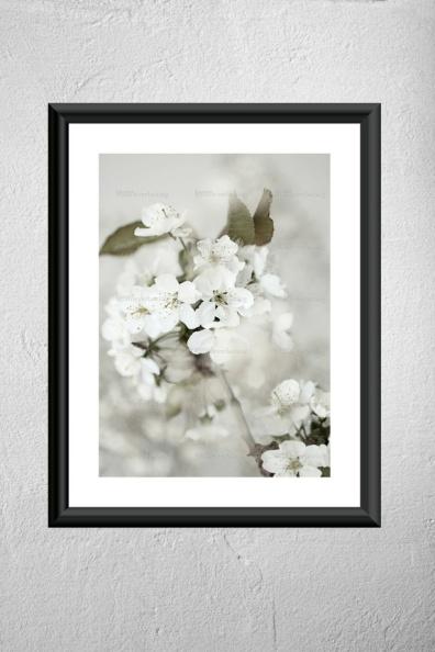 EMMIEVERLASTING: Serene. Fotokunst A4 https://www.epla.no/handlaget/produkter/849801/